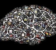 hersenen XTNT